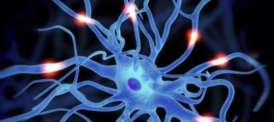 Models of Care Within Motor Neurone Disease